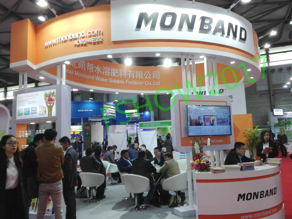 MONBAND Stand